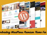 Downloading WordPress Premium Theme For Free